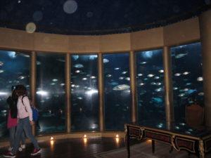 En el Aquarium